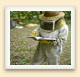 Keeping accurate records of the health and performance of the bees is an essential part of the beekeeper's job.